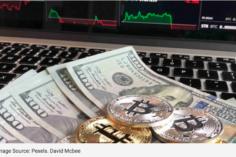 dollar vs bitcoin